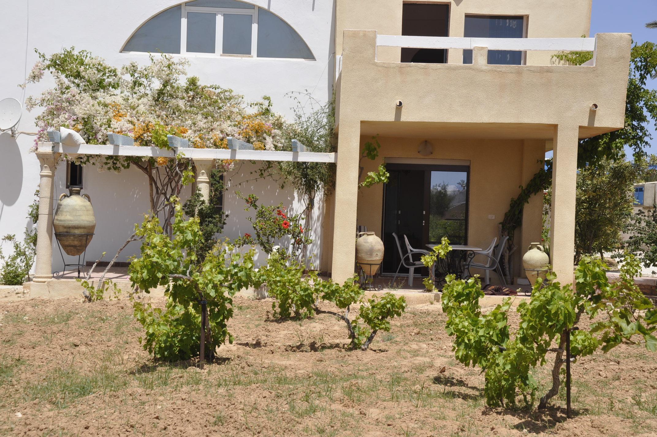 Maison d'hôtes Tanit Djerba 5