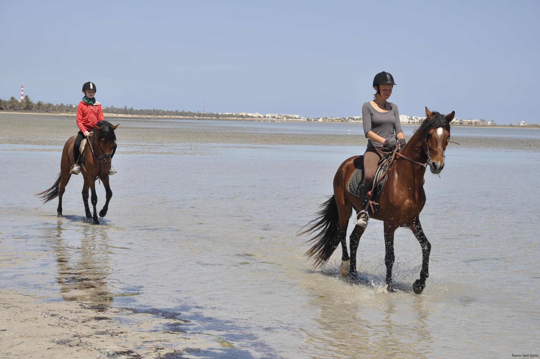 Ranch Tanit Djerba 2
