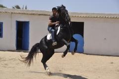 Ranch Tanit Djerba 14